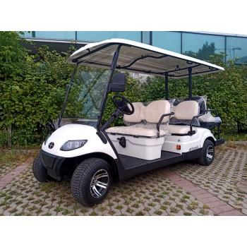 Грузопассажирский гольфкар ITALCAR ATTIVA 6L.6
