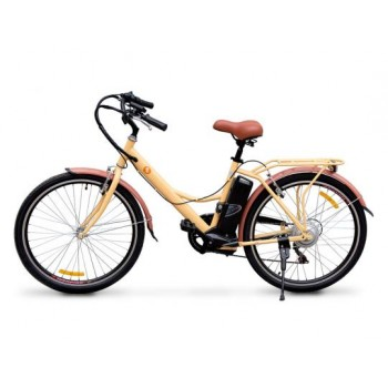 ЭлектровелосипедHoverbotCB-6Urban