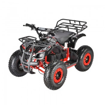 Квадроцикл WS-SNEG 1500w